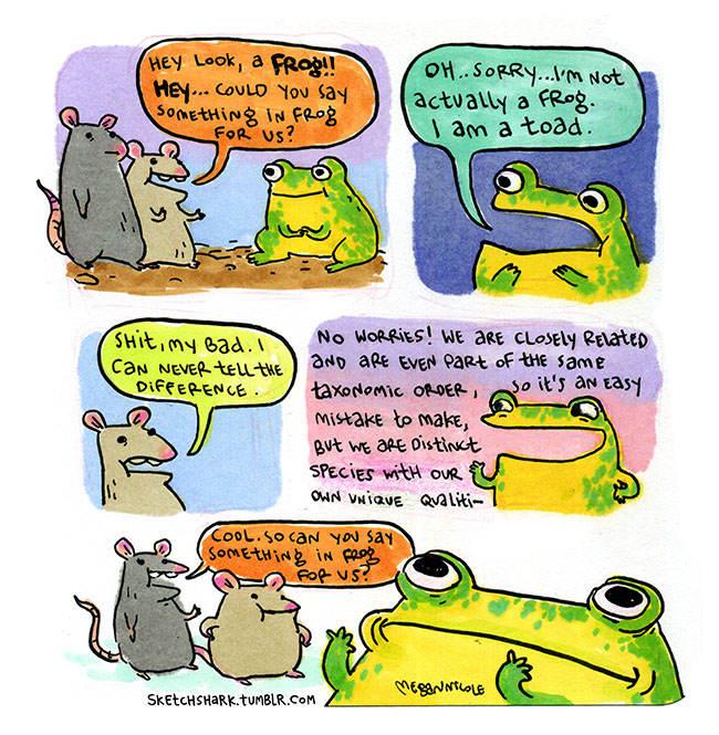 Bande dessinée présentant deux rats qui prennent un crapaud pour une grenouille et insistent pour qu'il dise quelque chose en langue grenouille.